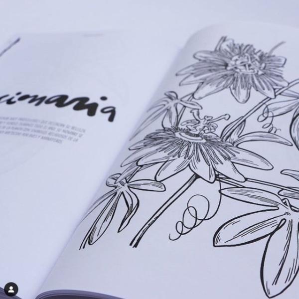 flores chilenas 02.jpg