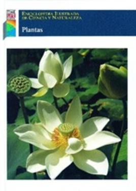 ECN Plantas