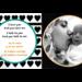 Baby Talk - Hablando con Bebé