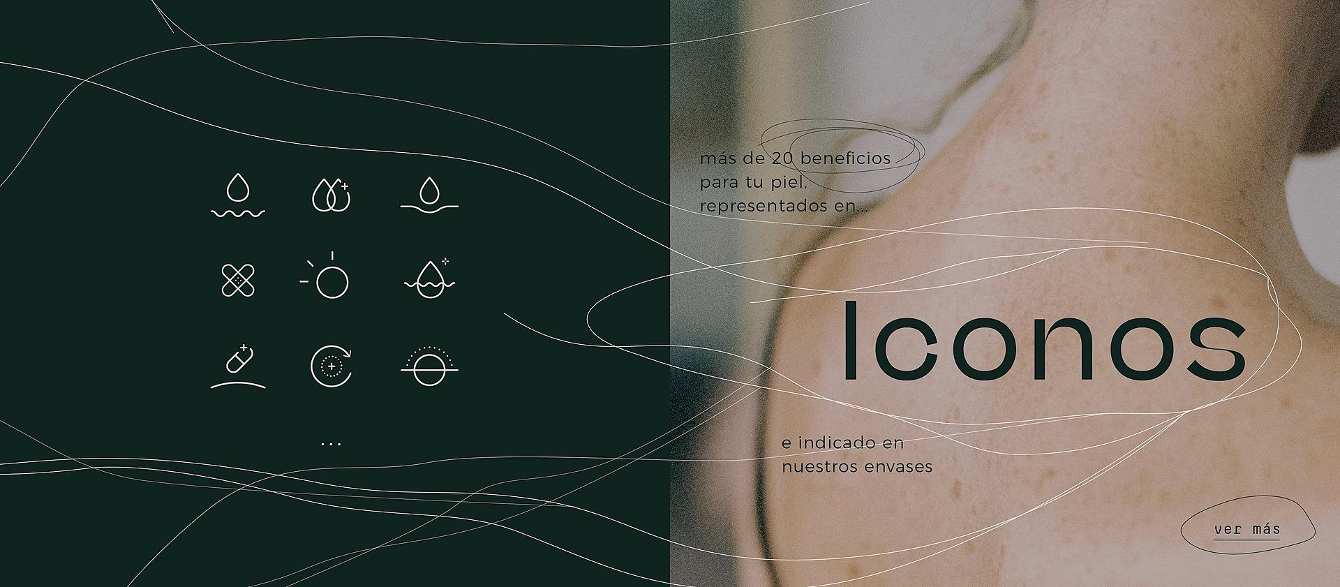 02_Iconos_Mesa_de_trabajo_102_Iconos_Mesa_de_trabajo_1.jpg