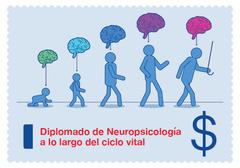 Diplomado en Neuropsicología: perspectivas teórico-prácticas para la comprensión de alteraciones cognitivas a lo largo del ciclo vital