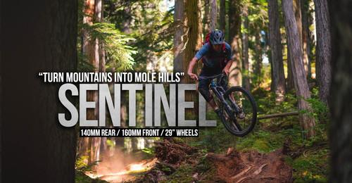 Bikes_MainActionImage_Sentinel.jpg