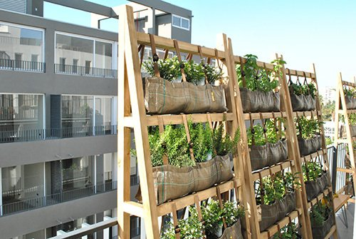 Huerta vertical grande