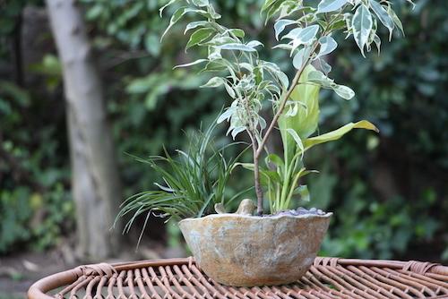 Macetero de cerámica de gres con un pajarito