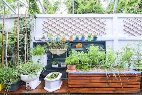 Mantención de jardines y terrazas de departamento y oficinas