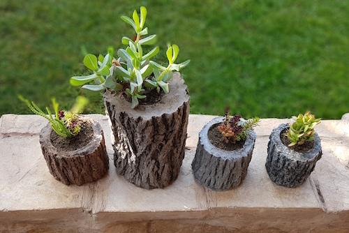Macetero chico de concreto tipo tronco con planta