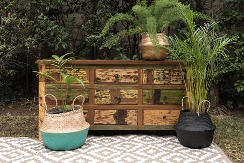 Canasto  de fibra con plantas de interior