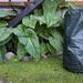 Compostera portátil