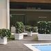 Últimas unidades: Jardinera italiana de 1 metro de largo - jardinera blanca con plantas.jpg