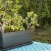 Últimas unidades: Jardinera italiana de 1 metro de largo - jardinera grande liviana.jpg