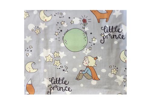 FUNDA DE PLUMÓN Little prince 2° Posición (120x180)