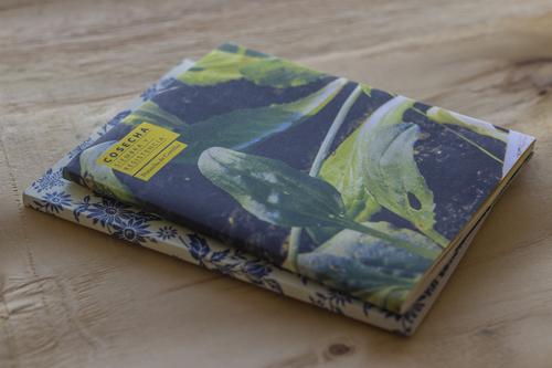 Pack Caldo de Cultivo + Catálogo Siembra y Cosecha