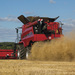 NEUMATICO AGRICOLA BKT 900/60R32 MOD. TERIS AGRICOLA-TRACCION TL