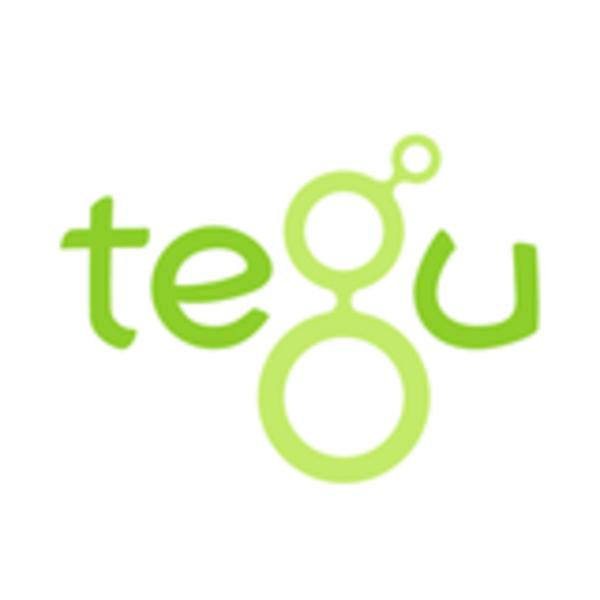 logo-TG_compact.png