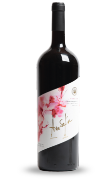 Caja Vino- 6 x Cabernet Sauvignon 1500 ml ($2.500 unitario)