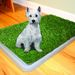 Baño Ecológico Mascotas Perros Xxl Pet Potty