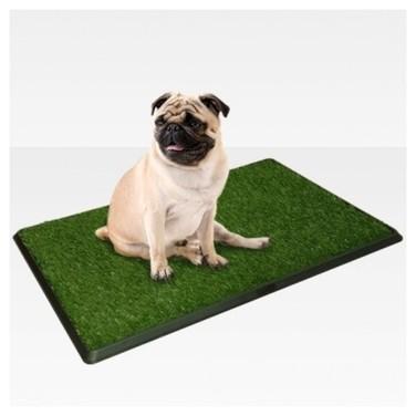 Baño Ecológico Mascotas Perros Xl