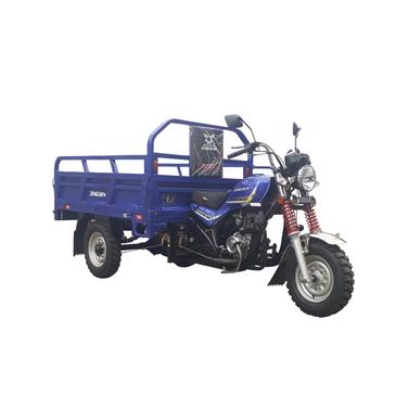 Triciclo de Carga Q1