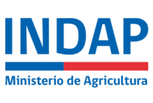 logo-indap.png