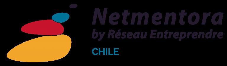 Netmentora-768x226
