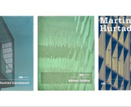 Serie Obras: Sebastián Irarrázaval | Adamo Faiden | Martín Hurtado