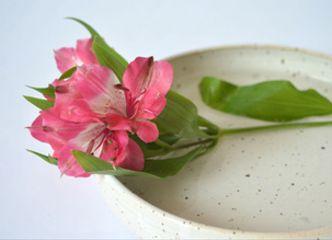 Floreros, jarras y fuentes: todo sirve cuando queremos llegar de flores nuestra casa. Tenemos muchas opciones en cerámica gres