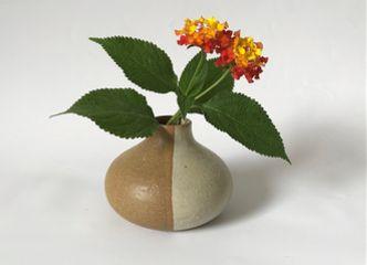 Este Día de la Madre un pequeño detalle con una flor puede darle felicidad a tu mamá
