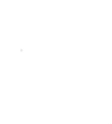 Chips de madera de Ulmo 2,5 KG - Chips gruesos (15-35 mm)