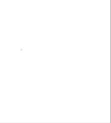 Saco de Chips de madera de NOGAL 14 KG - 48 Litros - Chips medianos (4-10 mm)