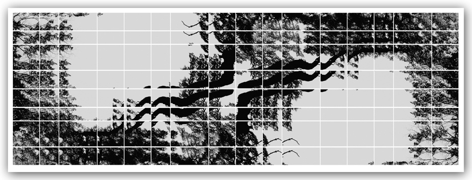 04. Silhouettes in equilibrium