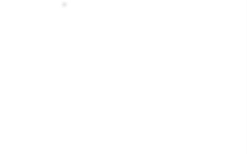 Limpia Inyectores Diesel ( Liqui Moly)