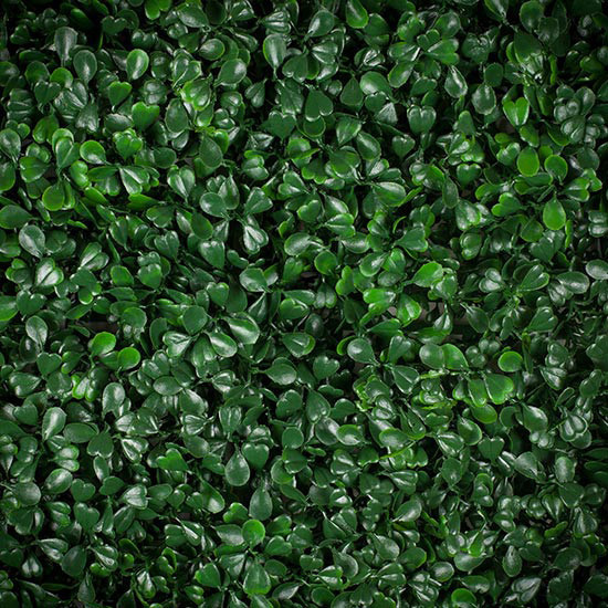 Trebol verde c/UV
