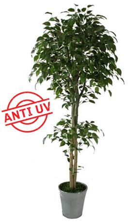 Ficus artificial CON FILTRO UV