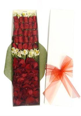Caja 24 Rosas