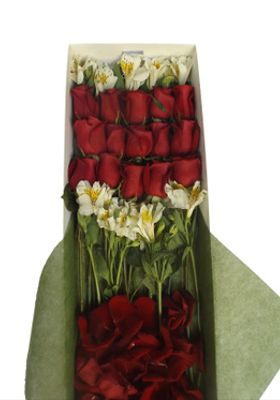 Caja 15 Rosas