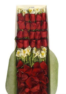 Caja 21 Rosas