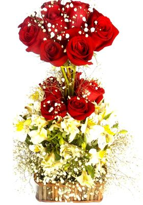 Arreglo 15 Rosas
