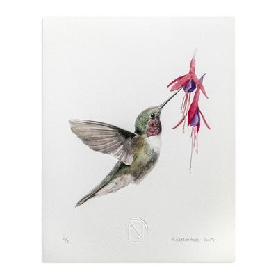 Ilustracion 20x25 Fauna