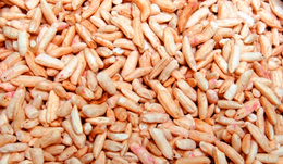 Pipoca arroz