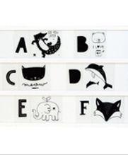 Set de ABC y animales para Caja de Luz