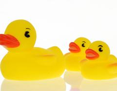 Familia de patos para el baño