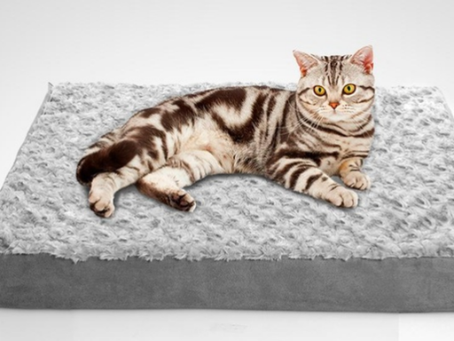 Colchón ortopédico para perros y/o gatos marca Petlover