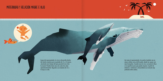 La ballena jorobada