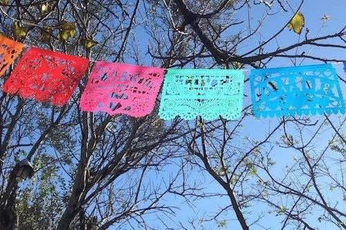 Banderines mexicanos