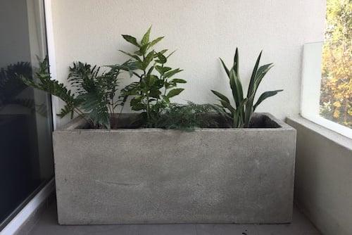 Jardinera de cemento de 100 x 40