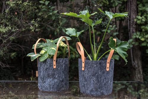 Canasto de fieltro con mango de cuero y planta