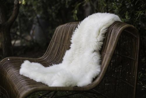 Piel de oveja grande -