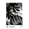 FOMASPEED VAR. 312 30x40 CM/10 hojas