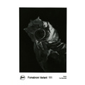 FOMABROM VAR. 111 40x50 CM/10 hojas