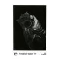 FOMABROM VAR. 111 30x40 CM/10 hojas